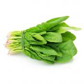 Fresh-Spinach-Bunch