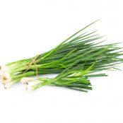 spring-onions